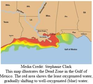Hypoxic Zone Map by Stephanie Clark